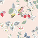 BIRDS & BERRIES
