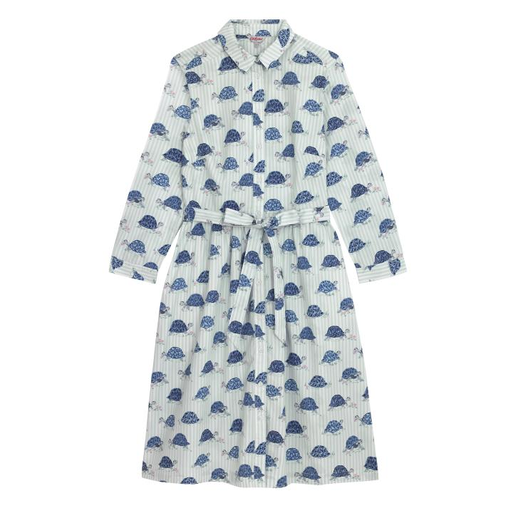 COTTON SHIRT DRESS TORTOISE STRIPE PALE GREEN